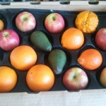 CSA Box filled with apples, tangelos, oranges, tangerines, and avocados.
