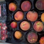 CSA Box filled with two cherry clamshells and an assortment of peaches and apricots.
