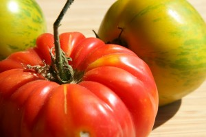 Closeup view of a rich red heirloom tomato with smaller green striped tomatoes in the background