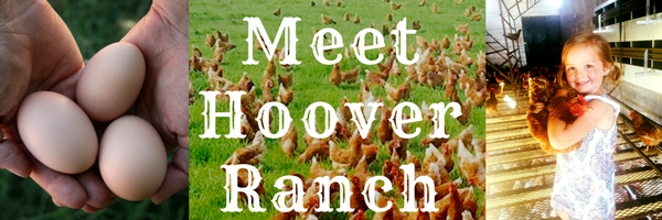 Meet Hoover Ranch
