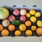 CSA Box filled with oranges, apples, lemons, an avocado, and a pomelo.