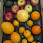 CSA Box filled with apples, oranges, tangerines, tangelos, and avocados.