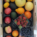 CSA Box with blueberries, strawberries, grapefruit, tangelos, tangerines, avocados and apples