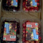CSA Box with clamshells full of Bing and Rainier cherries.